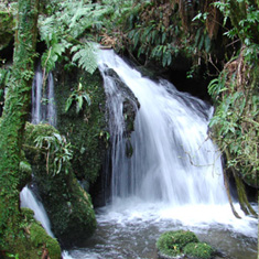 Buried Village Waterfall