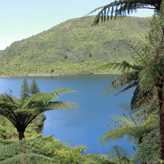 Blue Lake Rotorua attractions